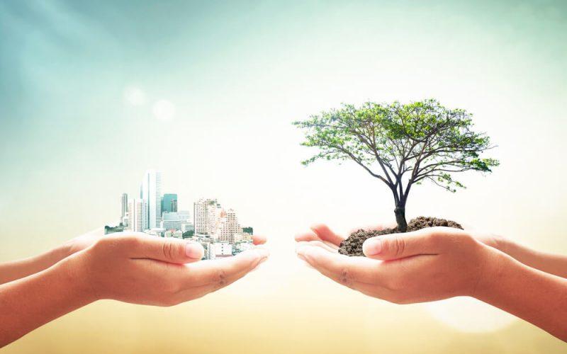 Duurzaamheid - Sustainable Development Goals - Banner
